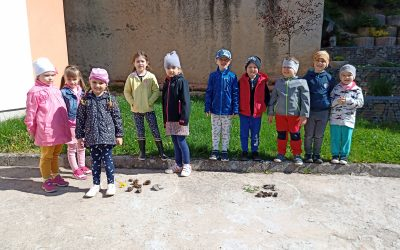 Jar na školskom dvore