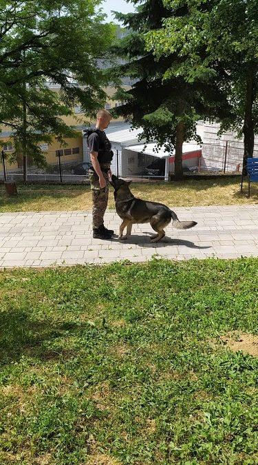 Ukážka výcviku policajných psov